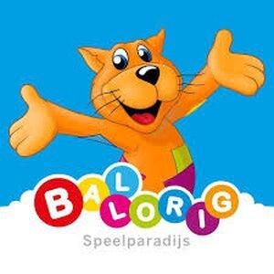 Ballorig Beverwijk logo