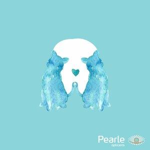 Pearle Castricum image 3